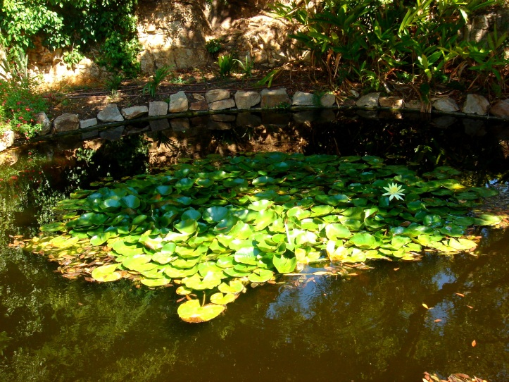 Botanical garden Marimurtra Blanes